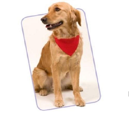 Bandana em nylon para pets