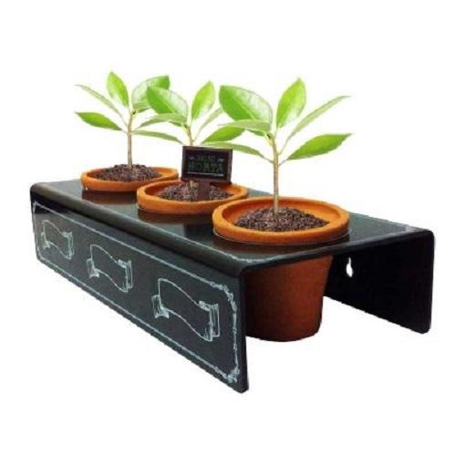 Mini Horta personalizada